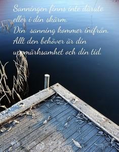 Din-sanning_gunillaboivie - 2